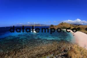 Pantai Pink di Pulau Komodo, NTT
